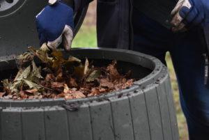 Avant de fermer le fût, couvrir mes déchets ménagers de feuilles mortes pour éviter les mouches.