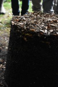 Démoulage du contenu d'un fût à compost.